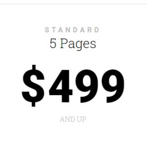 Standard – 5 Page Website
