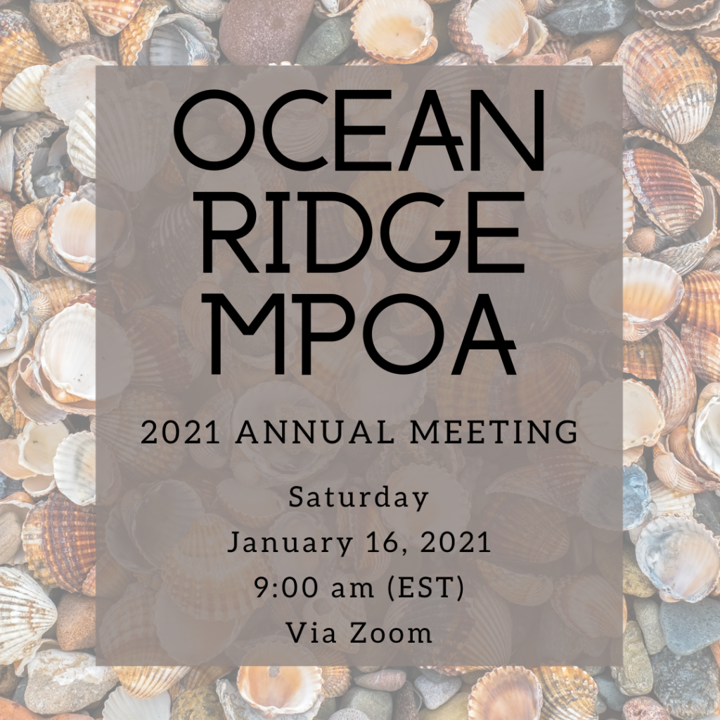 photo of 2021 annual meeting flyer