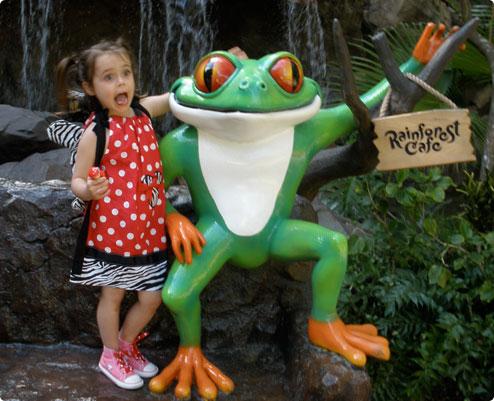 Rainforest Cafe's tree frog sign