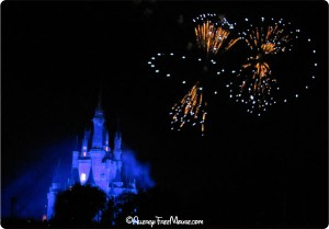 Fireworks viewing at Tomorrowland Terrace