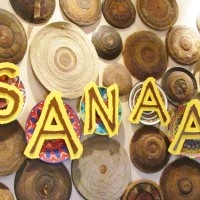 Sanaa food allergy quick review