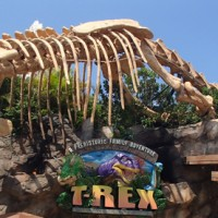 T-REX food allergy quick review