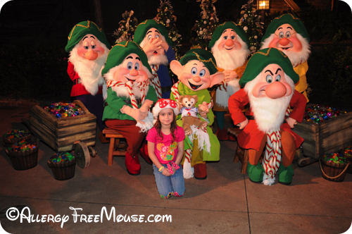 Meet the 7 Dwarfs at Mickey's Very Merry Christmas Party