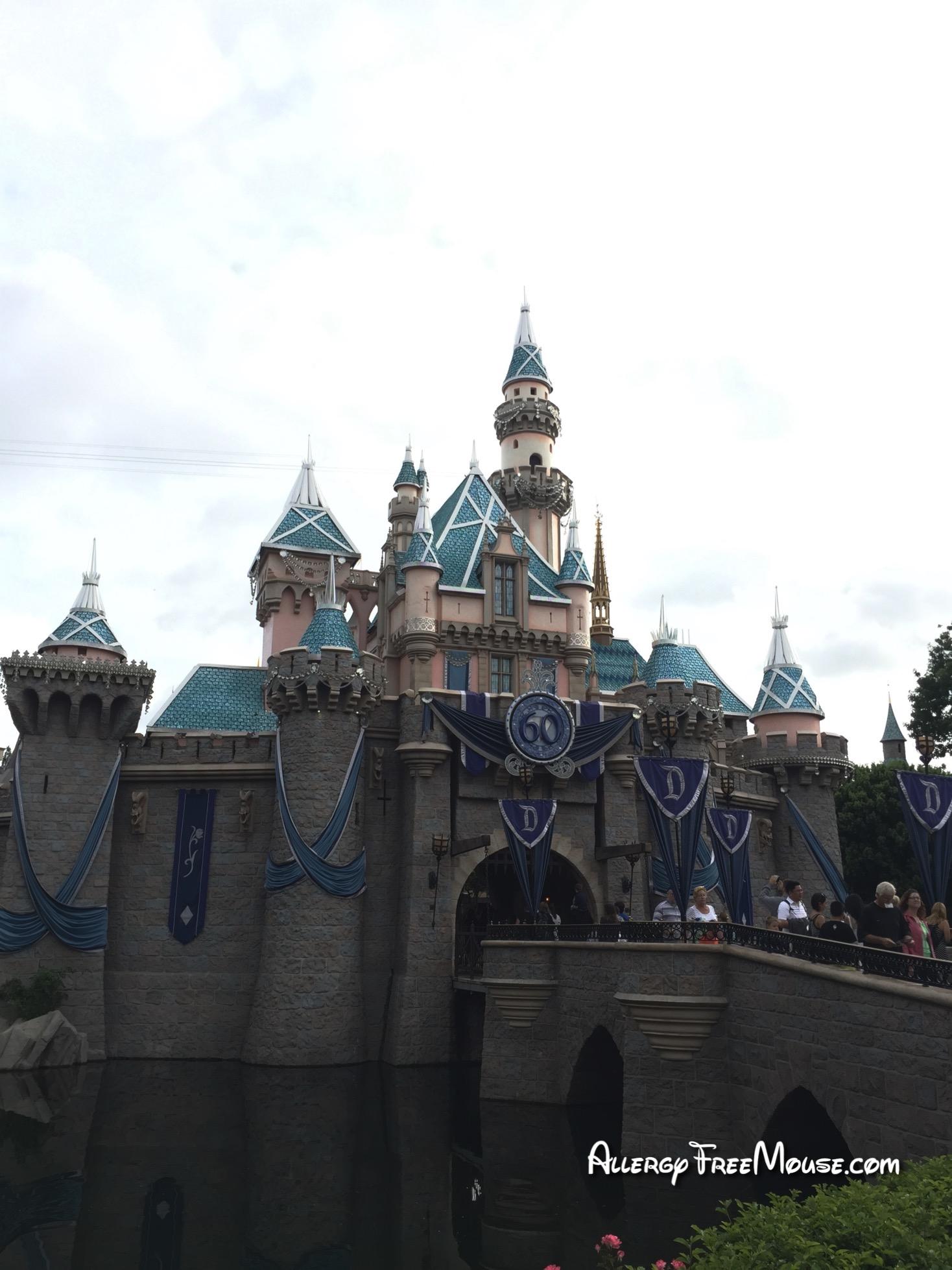 Disneyland Sleeping Beauty's Castle