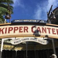 Skipper Canteen with dairy and egg allergies