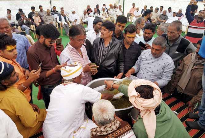 Bhang Chanav In Bikaner