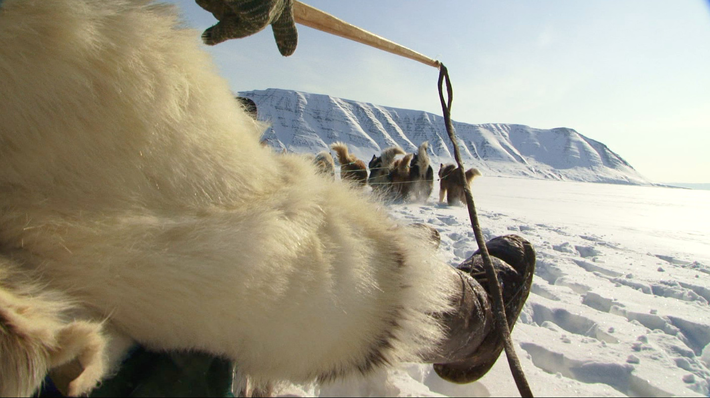 Inuit Seal Hunter Polar Bear Hunting Suit on Dogsled holding sled dog whip