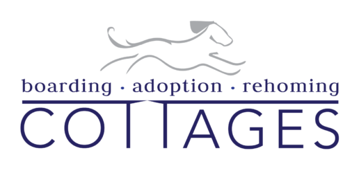 Dog Boarding, Adoption and Rehoming Cottages
