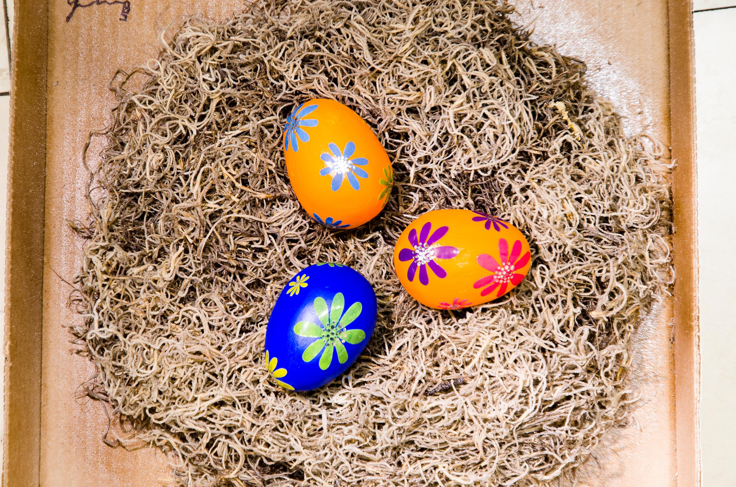 Sculpture showing eggs in a nest Taste of the Future by Beatriz Gerenstein