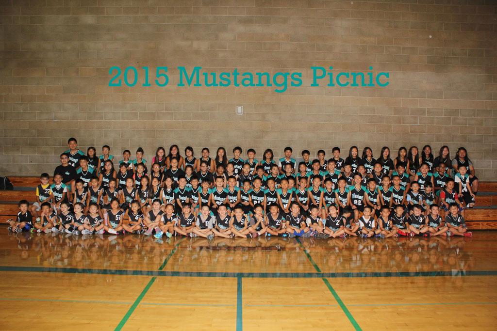 2015-Mustangs-Picnic