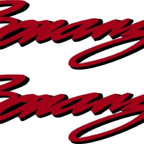 Beechcraft Bonanza Script Pair (2) Logo Decal