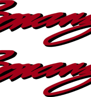 Beechcraft Bonanza Script Pair (2) Logo Decal