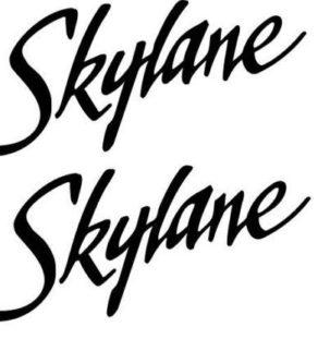 Cessna 182 Skylane Logo Decal PAIR (2)