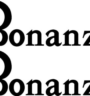Beechcraft Bonanza Pair (2) Logo Decal