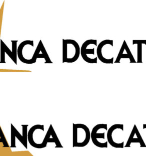 Bellanca Decathlon Logo Decal PAIR (2)
