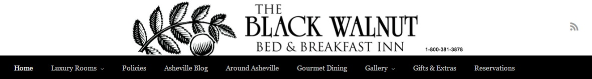 Asheville Website Sample