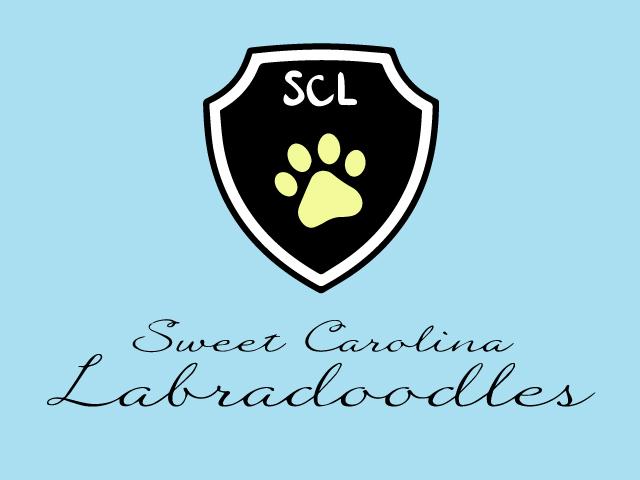 North Carolina Logo Design