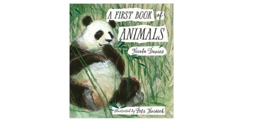 feature-image-a-first-book-of-animals