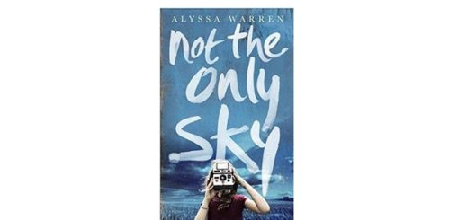 Feature Image - Not the Only Sky by Alyssa Warren book