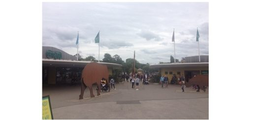 Feature Image - Chester-zoo-entrance-2