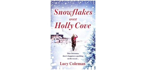 Feature Image - Snowflakes over Holly Cove by Lucy Coleman