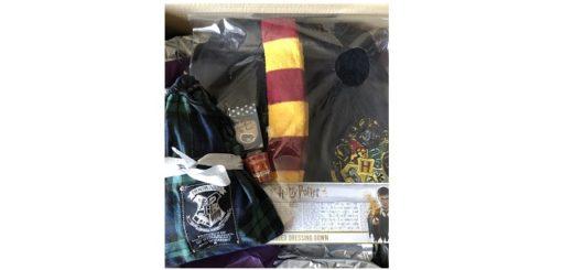 Feature Image - Harry Potter PJ