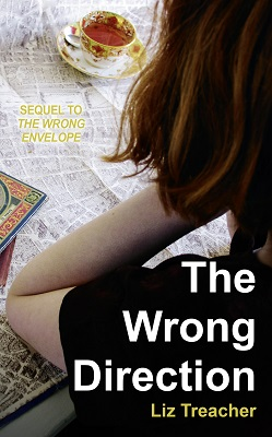 The Wrong Direction by Liz Treacher