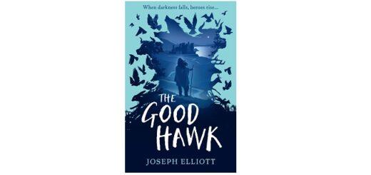 Feature Image - The Good Hawk by Joseph Elliott