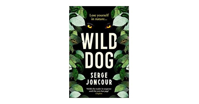 Feature Image - WIld Dog by Serge Joncour