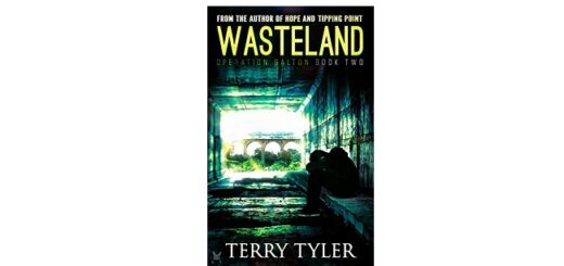 Feature Image - Wasteland by Terry Tyler