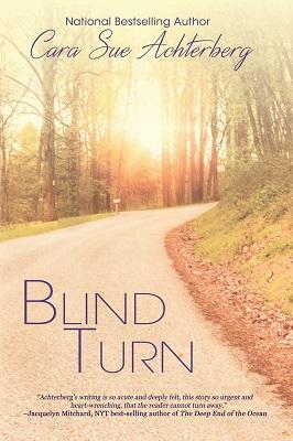 Blind Turn by Cara Sue Achterberg