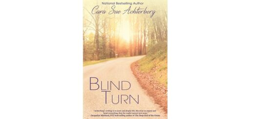 Feature Image - Blind Turn by Cara Sue Achterberg