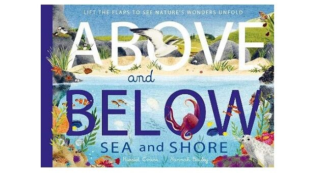 Feature Image - Above and Below Sea and Shore by Harriet Evans