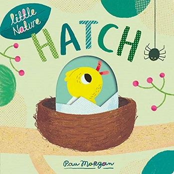 Hatch by Pau Morgan