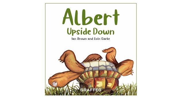 Feature Image - Albert Upside Down by Ian Brown