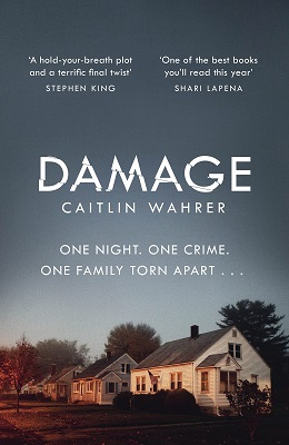 Damage by Caitlin Wahrer