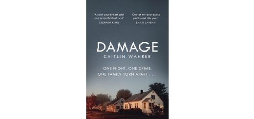 Feature image - Damage by Caitlin Wahrer