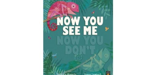 Feature Image - Now You See Me, Now You Don't by Patricia Hegarty