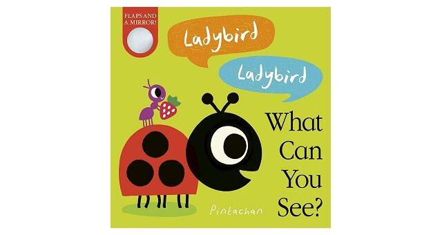 Feature Image - Ladybird Ladybird what can you see by Amelia Hepworth