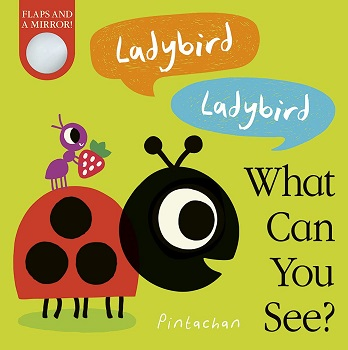 Ladybird Ladybird what can you see by Amelia Hepworth