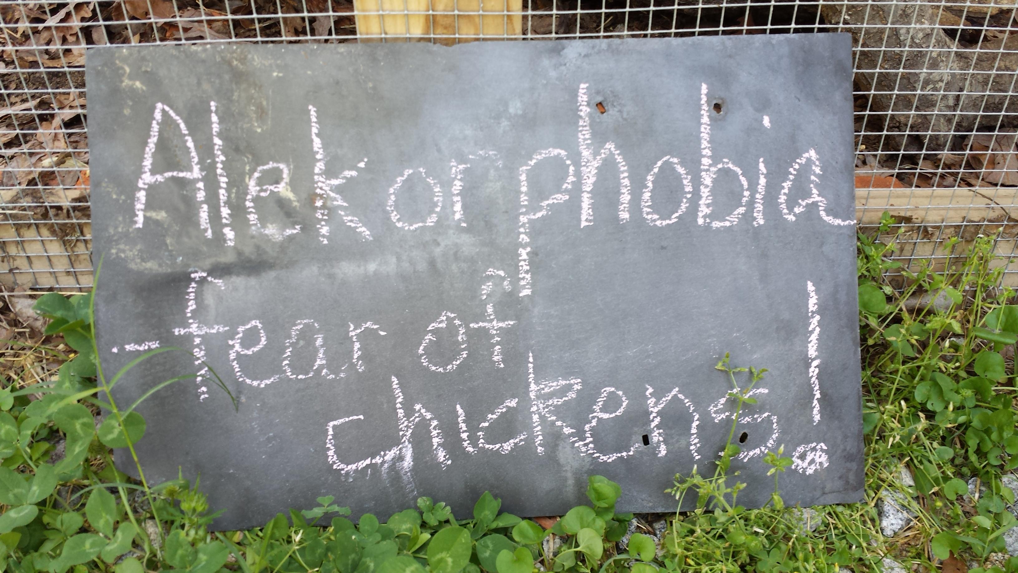 Garner Approves Zoning Change to permit Backyard Hens