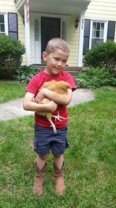 Town of Garner Approves Backyard Hens