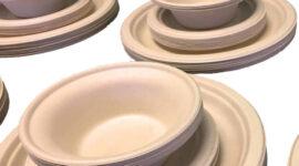 Paper Plate Alternative: An Eco-Friendly Option