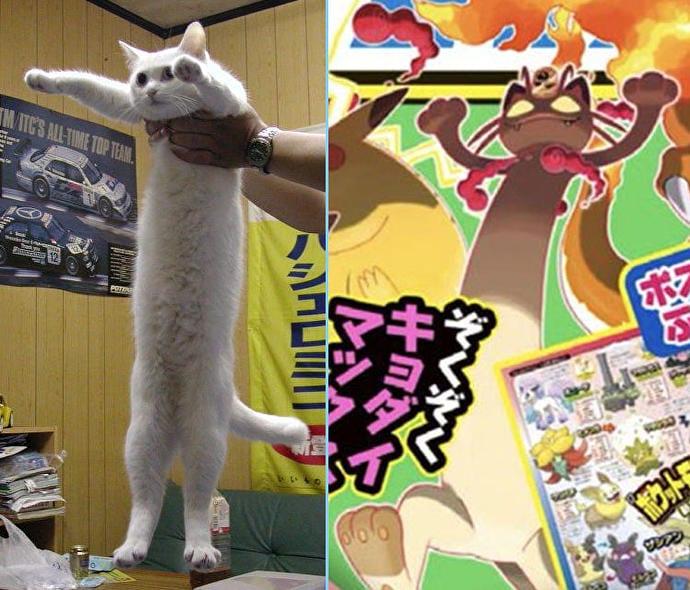 Pokenon Longcat
