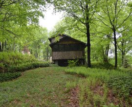 22 +/-  Acre Secluded Hideaway