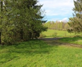 Foreclosure strictly as is. Make a reasonable offer. There are 2 parcels with total of 45.5 acres.