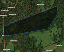 H9 -  APPROXIMATELY 30 MOSTLY WOODED ACRES IN FORK MOUNTAIN ESTATES.