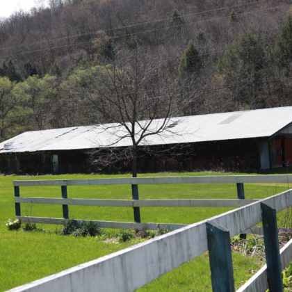 H63 - The property is a former stables and has dedicated space in the barns for horses. 9 stalls.