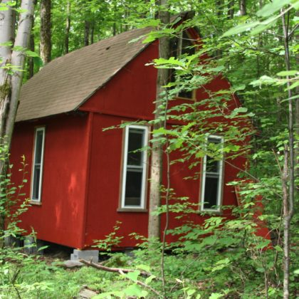 H36 - Hunters paradise off the grid back to basics cabin hideout on 15+/- secluded acres w/adjacent 900+/- acres of protected state land!