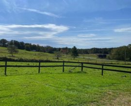 H3 - TWO BARNS - Beautiful country setting!  13.93 acres of half wooded, half open pastures...